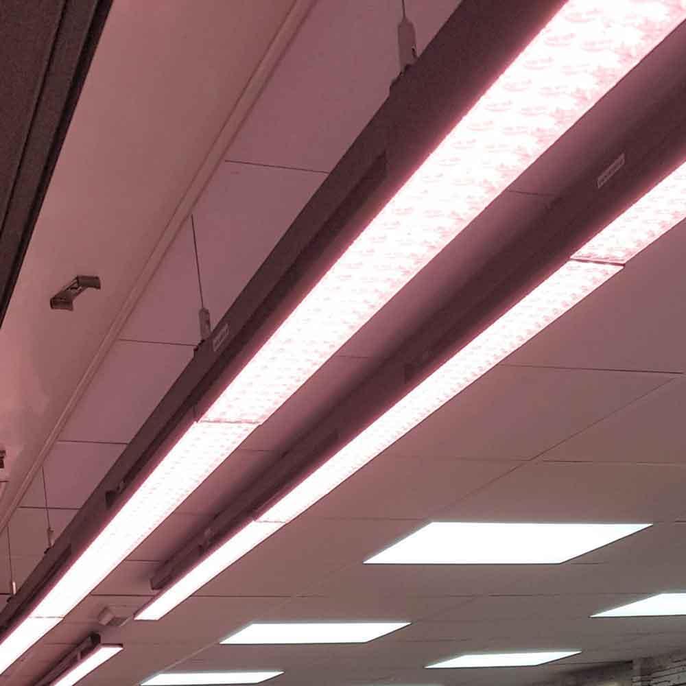 La iluminación perfecta para salas de venta o comercios gourmet