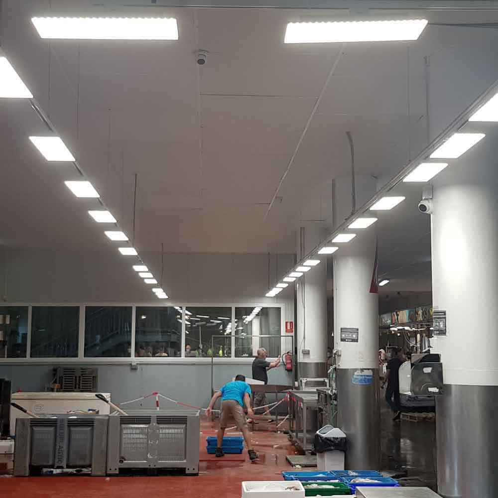 LuzLinea Panel diseñada para la iluminación de salas de venta.